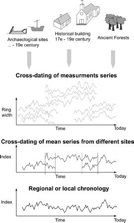 Absolute dating definition anthropology jpg 270x450